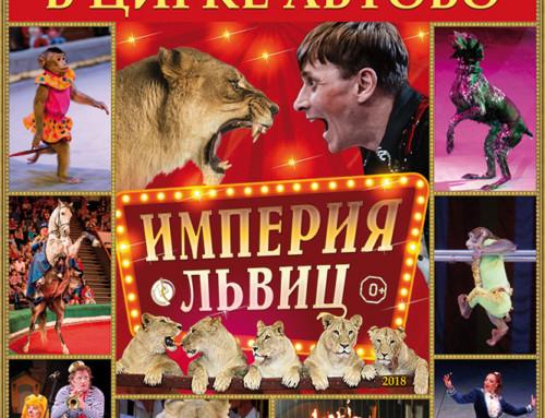 Цирк в Автово — «империя львиц»